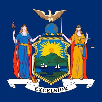 Who will win the New York Democratic primary?