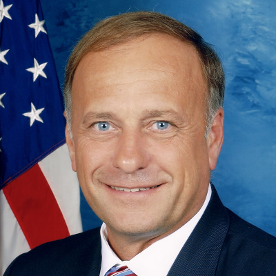 Will Steve King be re-elected to the House from IA's 4th district?